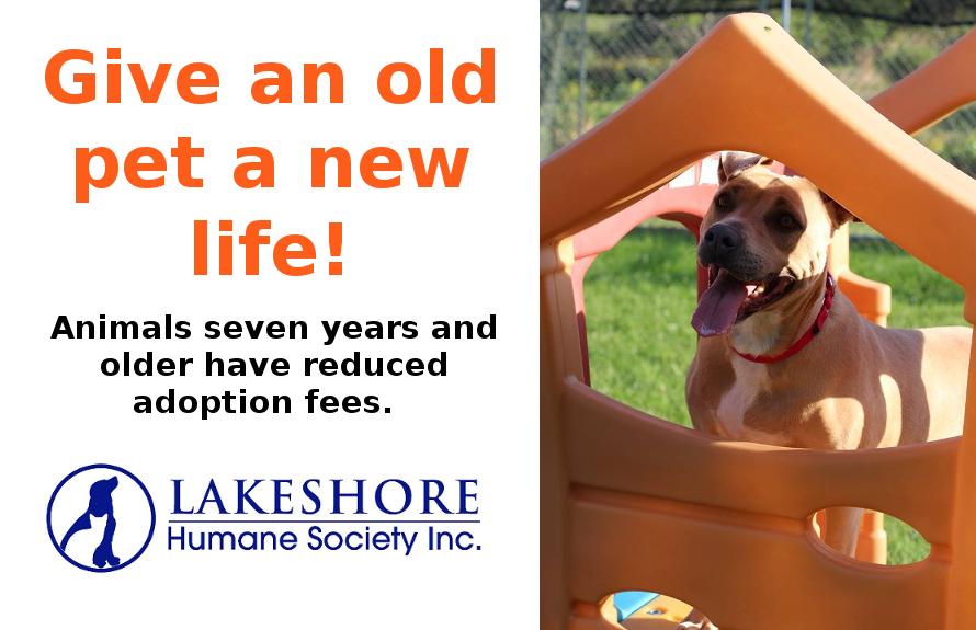 Lakeshore Humane Society | Manitowoc WI